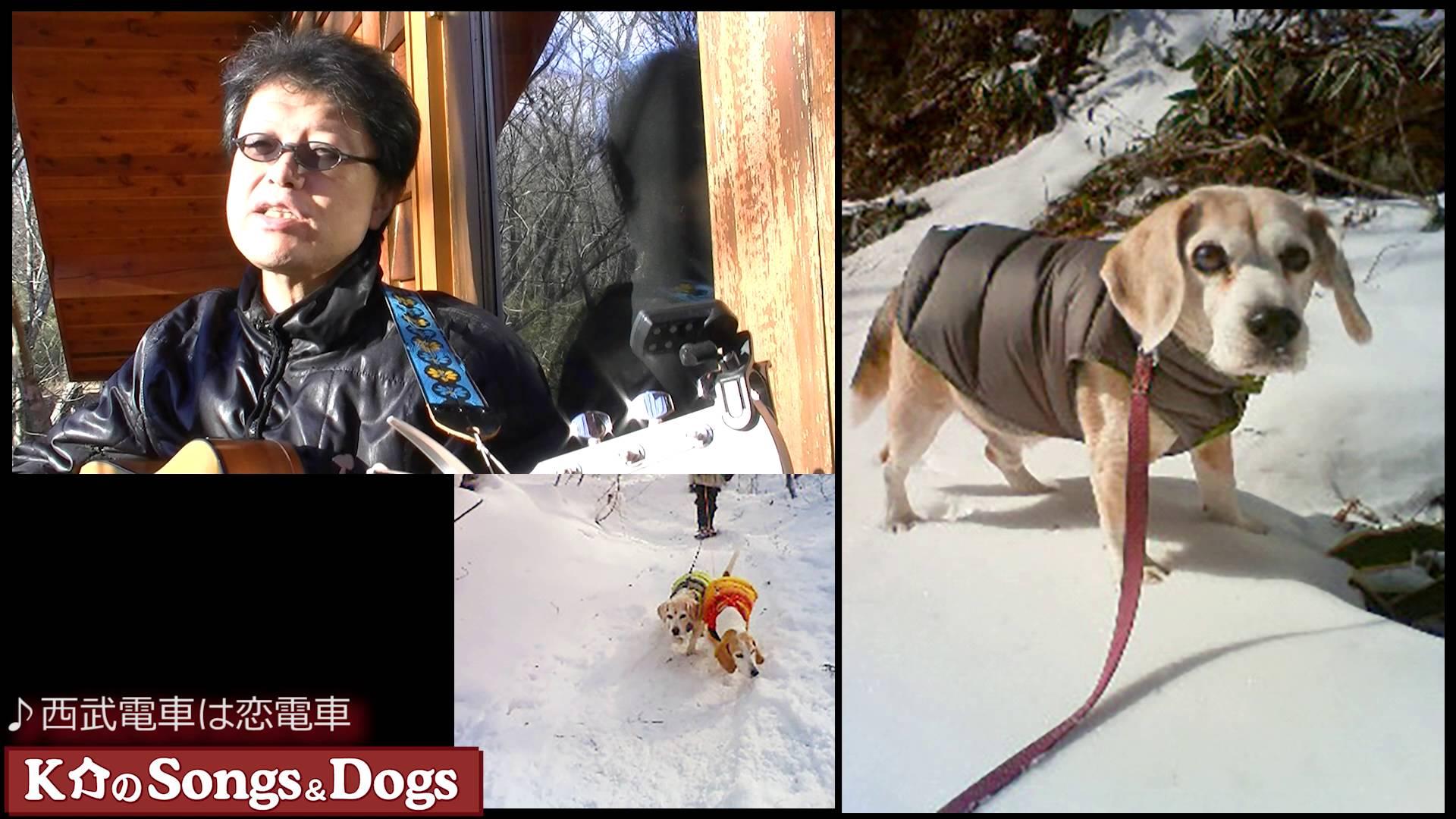 100th: K介のSongs&Dogs週末はミュージシャン