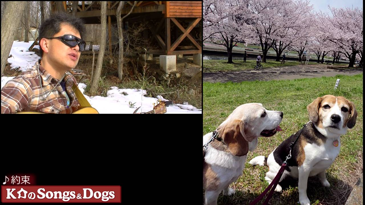 110th: K介のSongs&Dogs週末はミュージシャン