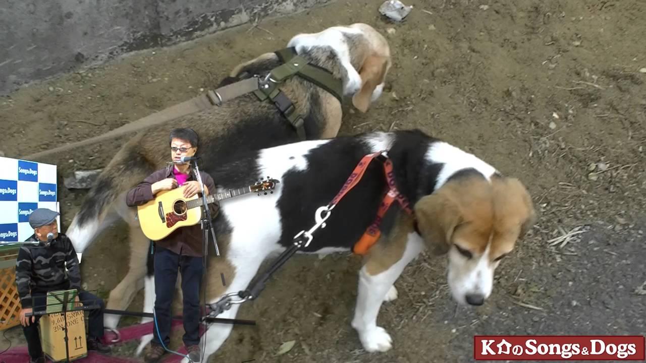 112th: K介のSongs&Dogs週末はミュージシャン