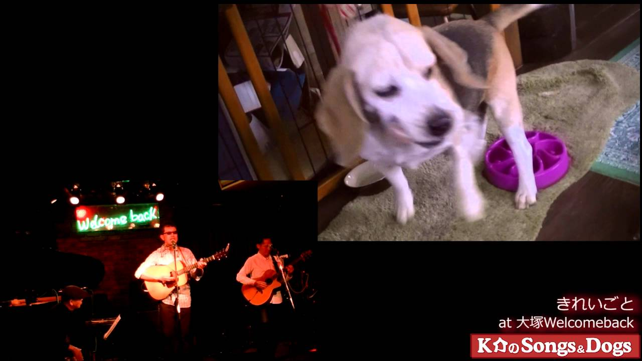 113th: K介のSongs&Dogs週末はミュージシャン