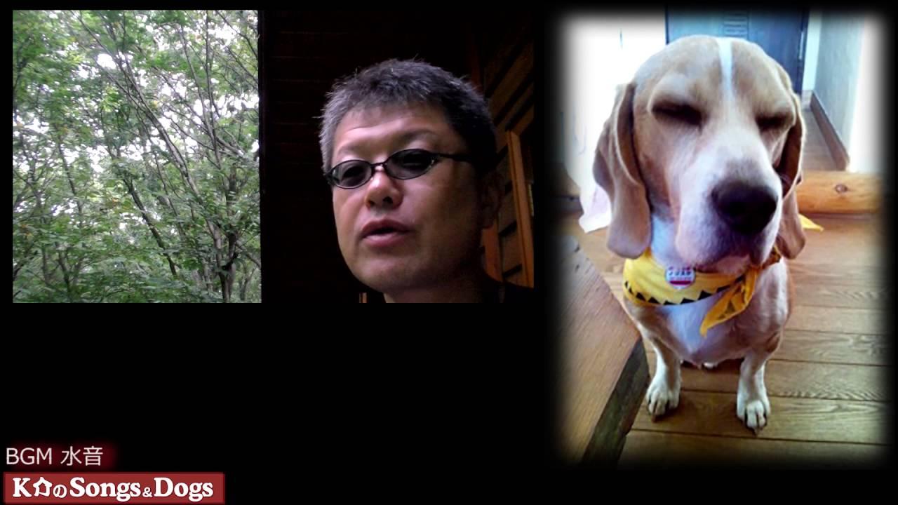 134th: K介のSongs&Dogs週末はミュージシャン