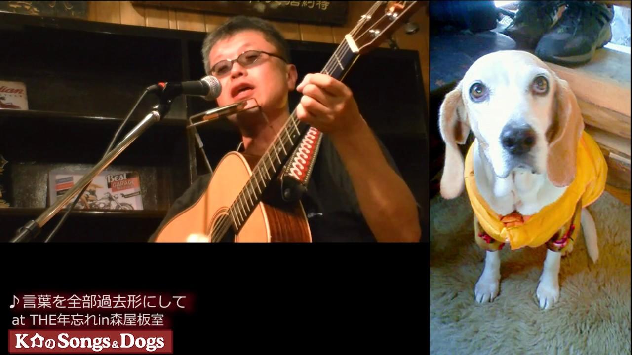 149th: K介のSongs&Dogs週末はミュージシャン