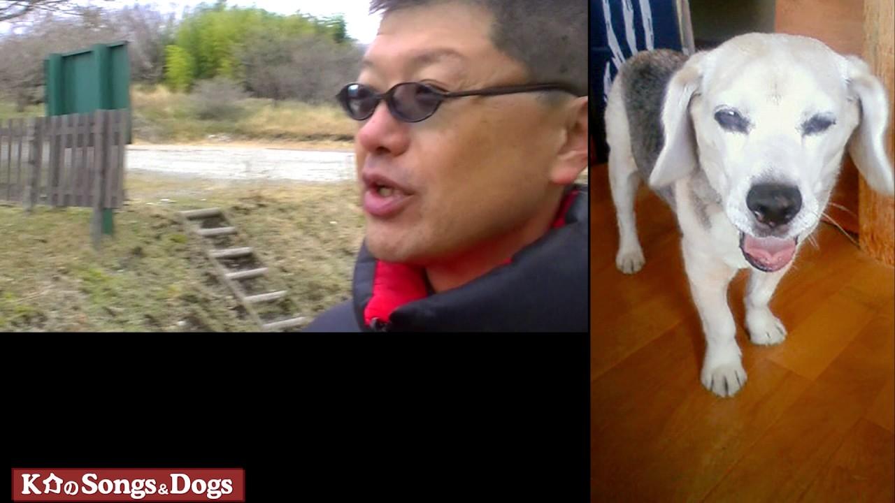 152th: K介のSongs&Dogs週末はミュージシャン