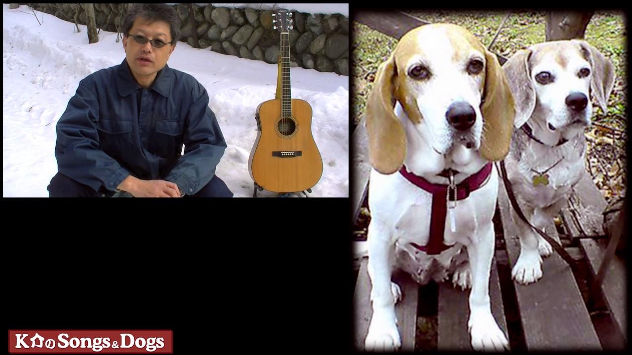 156th: K介のSongs&Dogs週末はミュージシャン