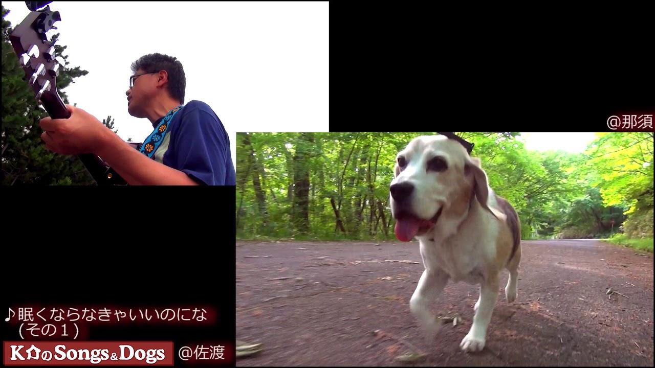 187th: K介のSongs&Dogs週末はミュージシャン