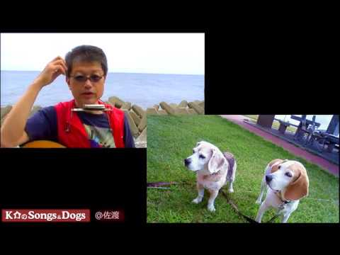 189th: K介のSongs&Dogs週末はミュージシャン