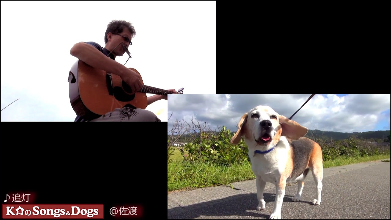 190th: K介のSongs&Dogs週末はミュージシャン