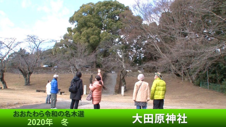 大田原冬の名木ハイキング~大田原神社2020年12月23日