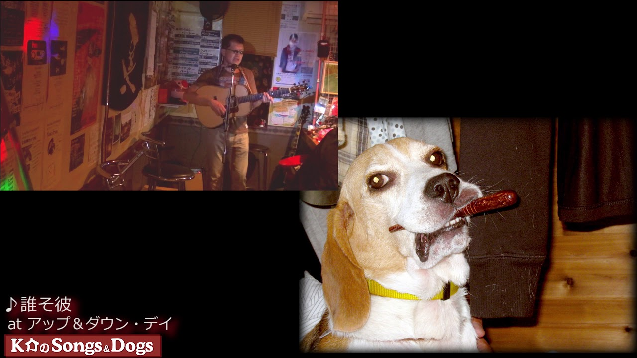 206th: K介のSongs&Dogs週末はミュージシャン