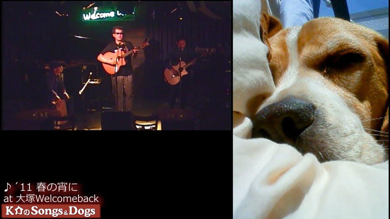 212th: K介のSongs&Dogs週末はミュージシャン