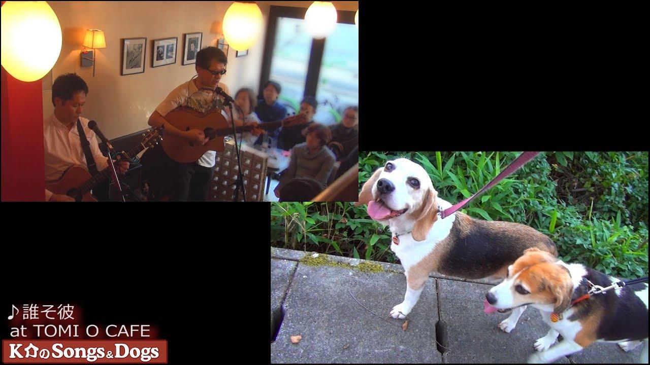 218th: K介のSongs&Dogs週末はミュージシャン