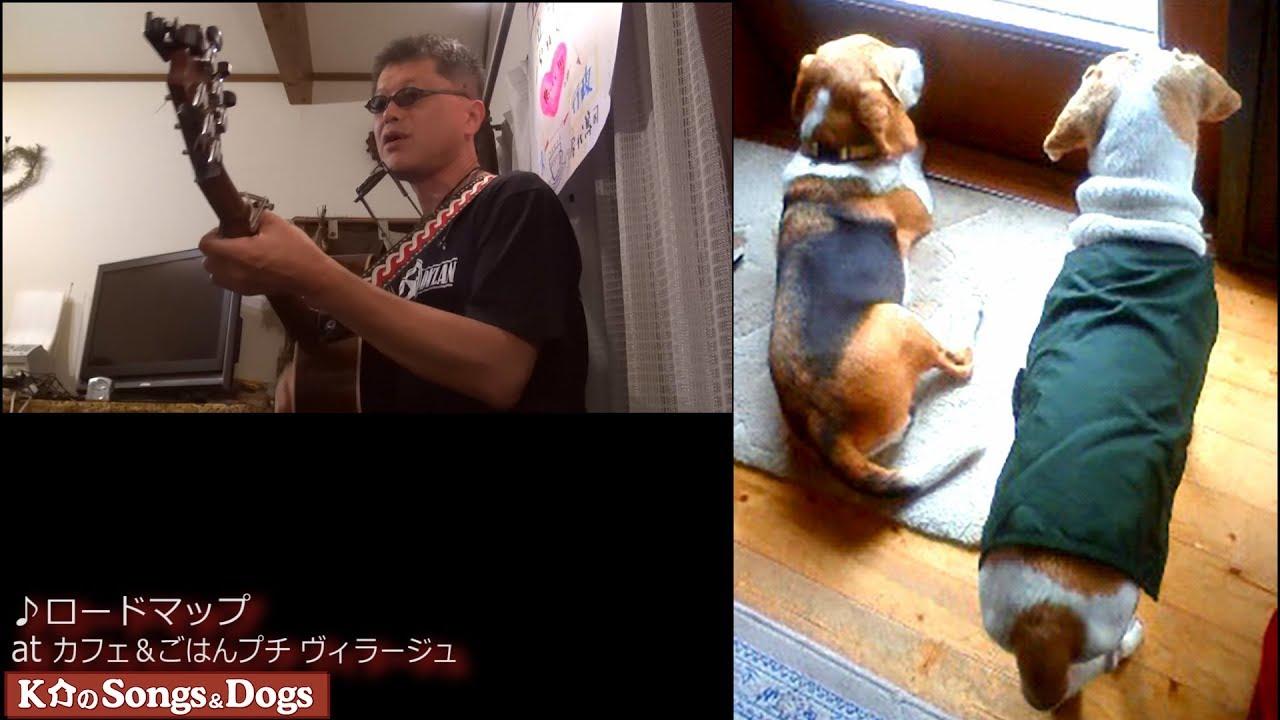 236th: K介のSongs&Dogs週末はミュージシャン