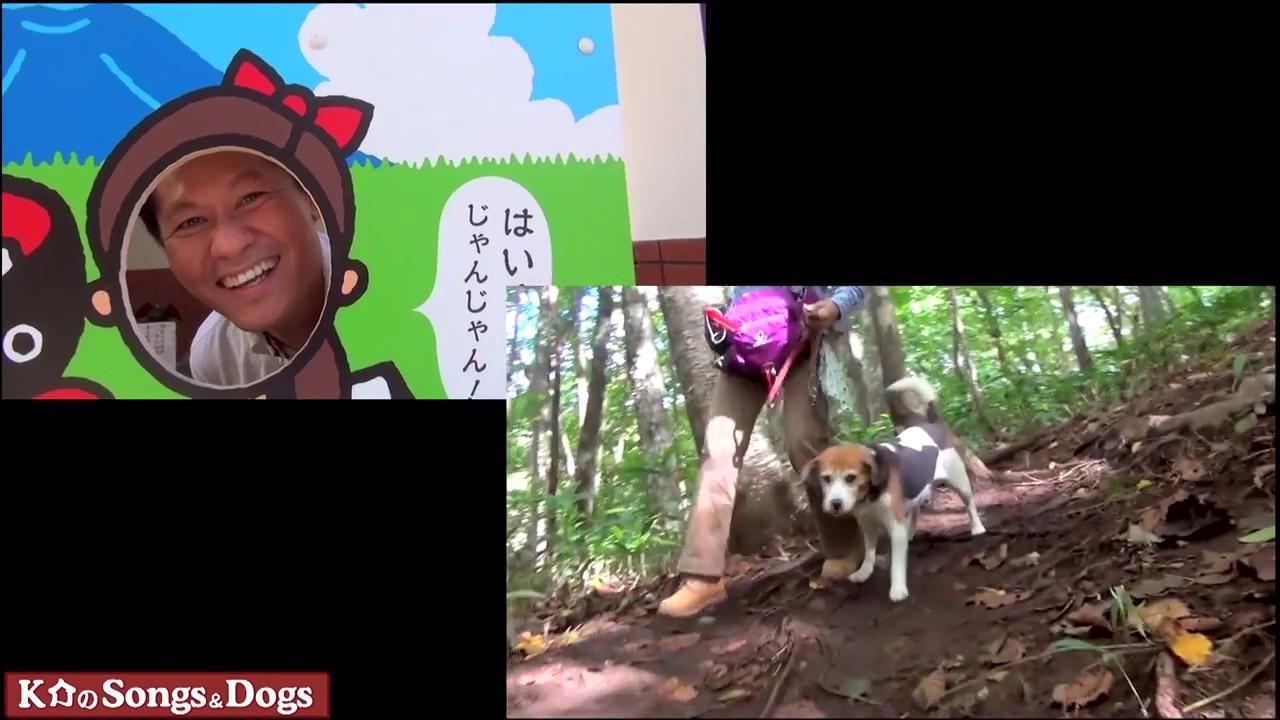 245th: K介のSongs&Dogs週末はミュージシャン