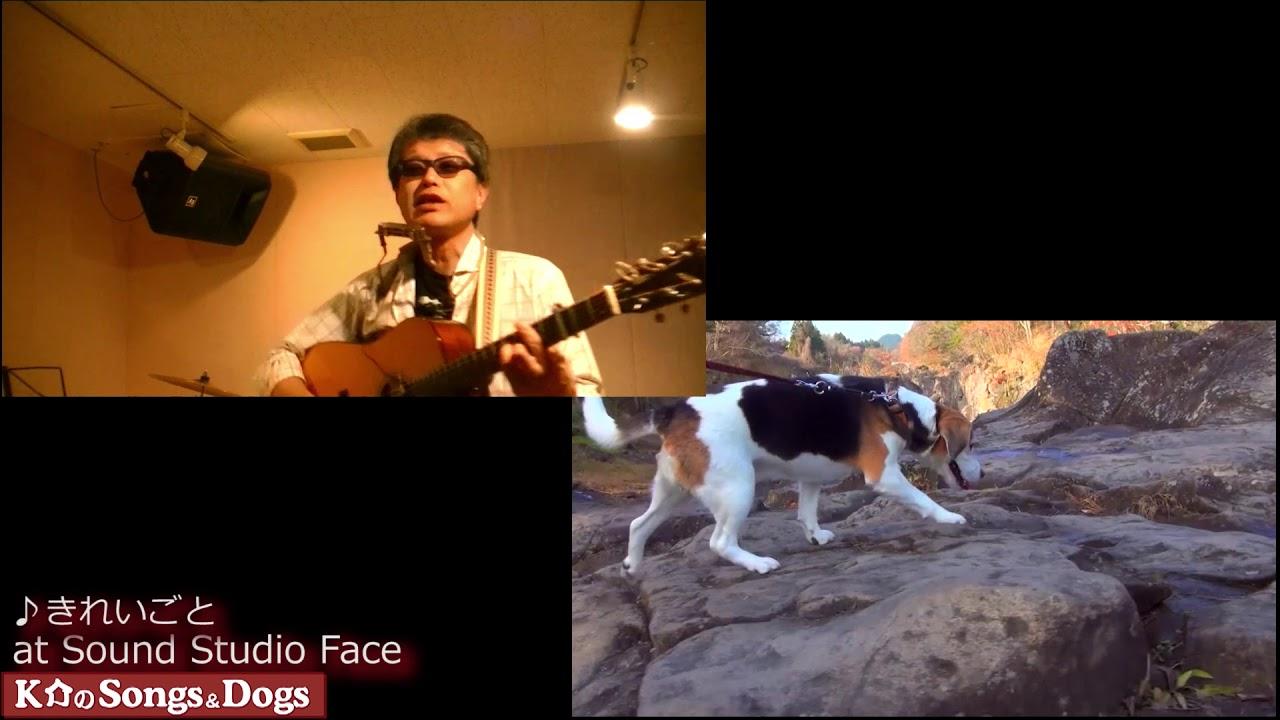 261th: K介のSongs&Dogs週末はミュージシャン