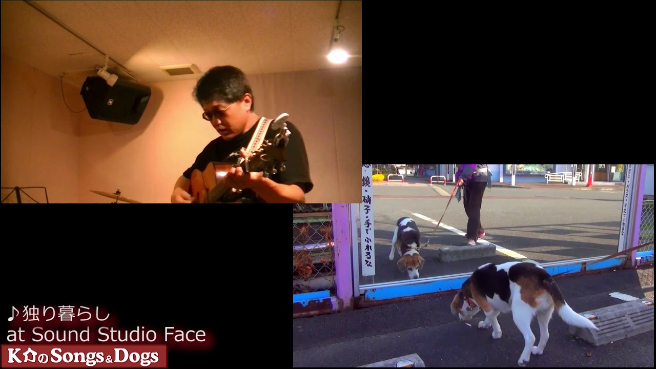 262th: K介のSongs&Dogs週末はミュージシャン