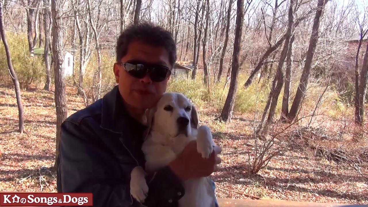 273th: K介のSongs&Dogs週末はミュージシャン