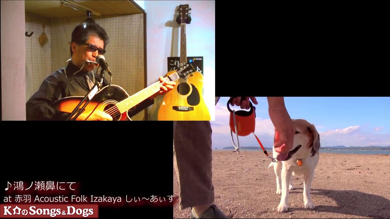 286th: K介のSongs&Dogs週末はミュージシャン