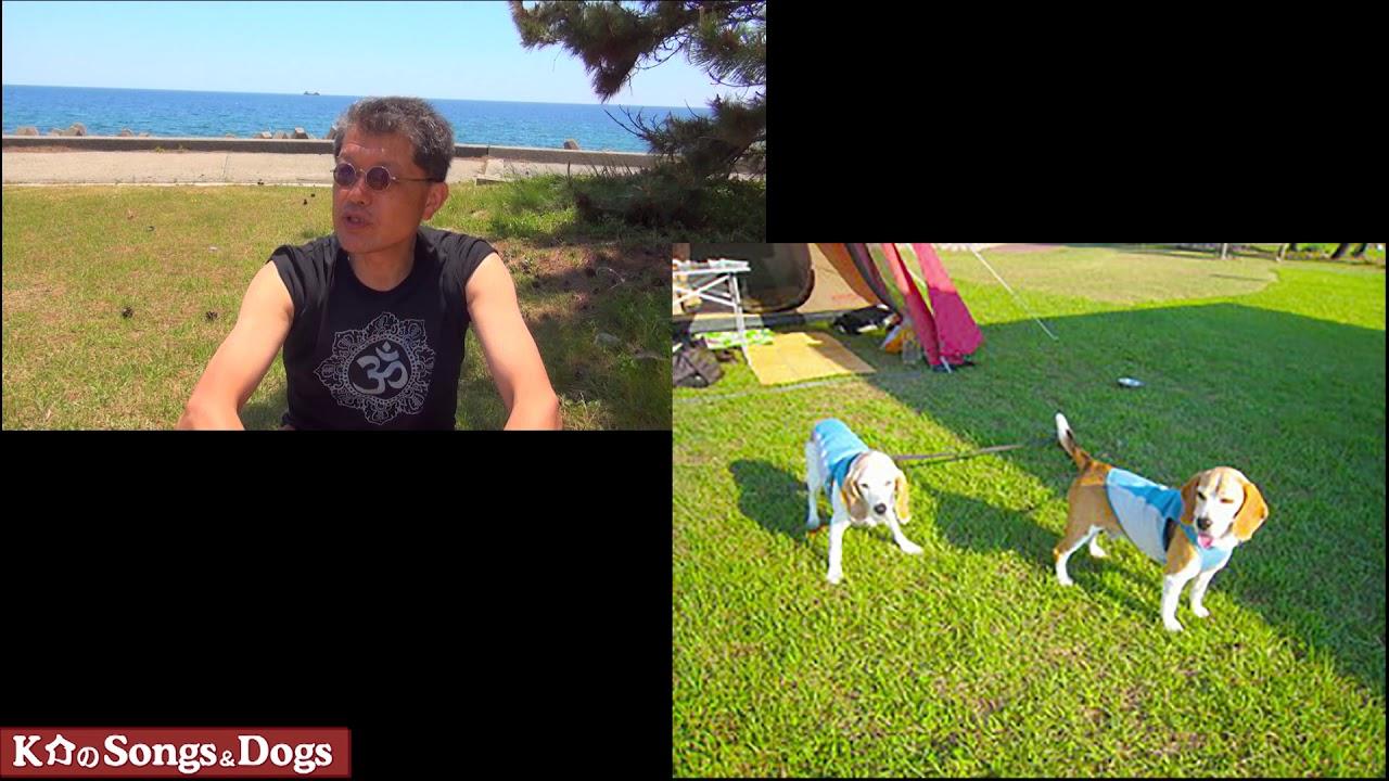288th: K介のSongs&Dogs週末はミュージシャン