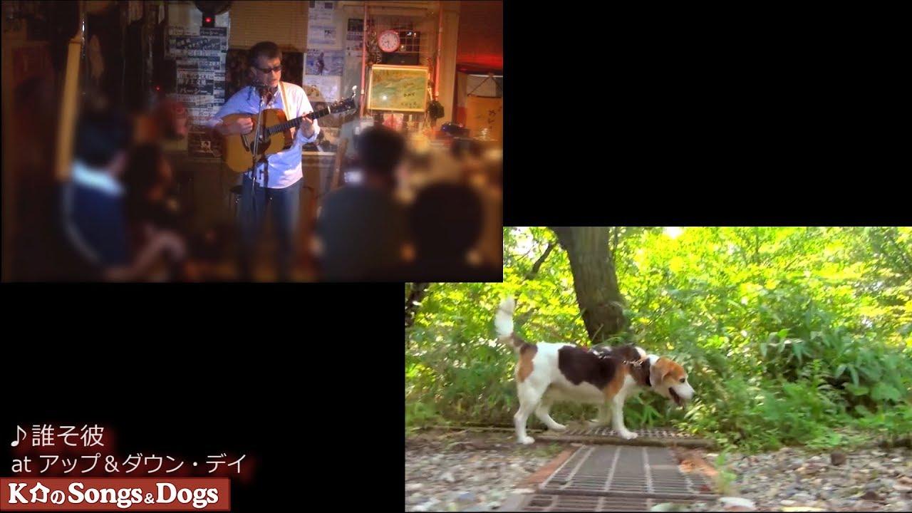 289th: K介のSongs&Dogs週末はミュージシャン