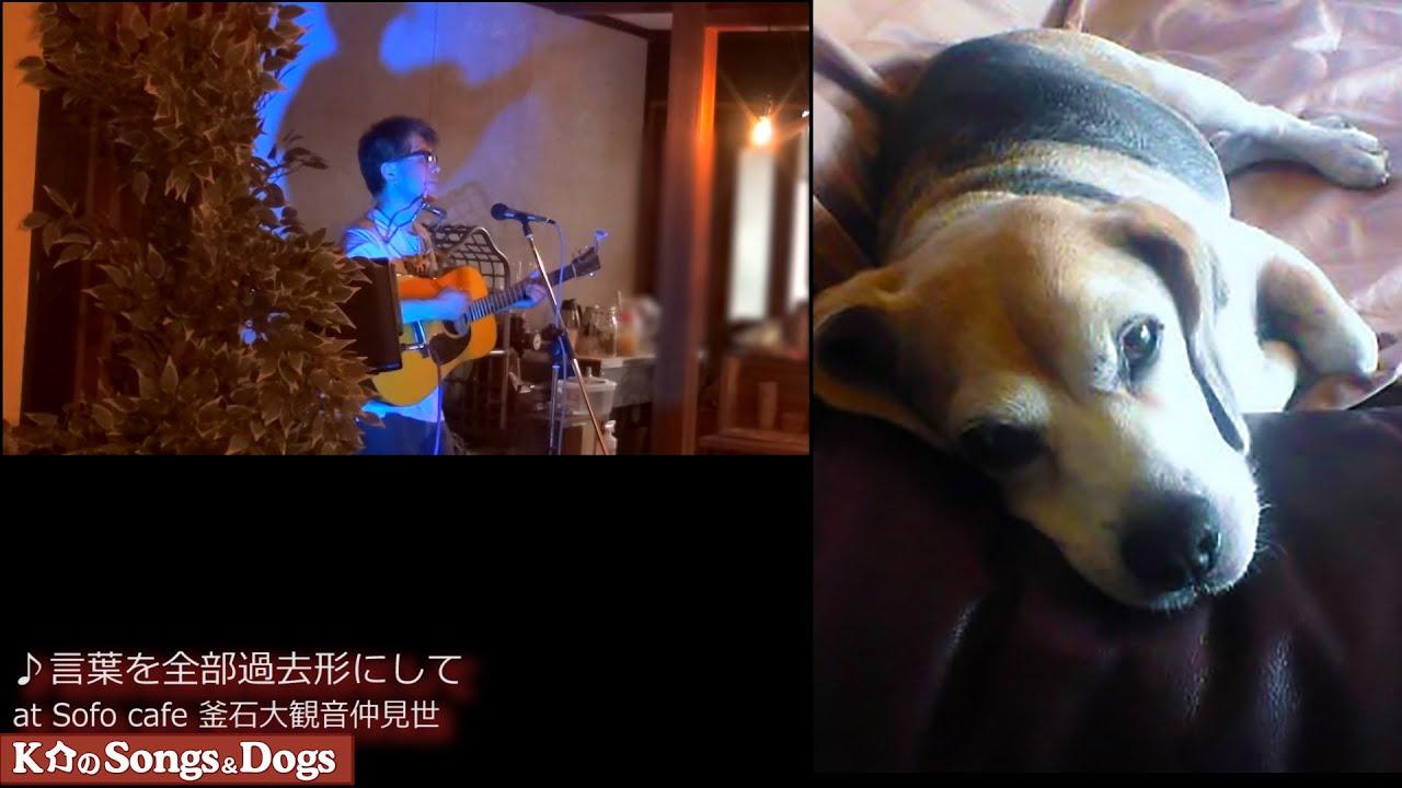 304th: K介のSongs&Dogs週末はミュージシャン304