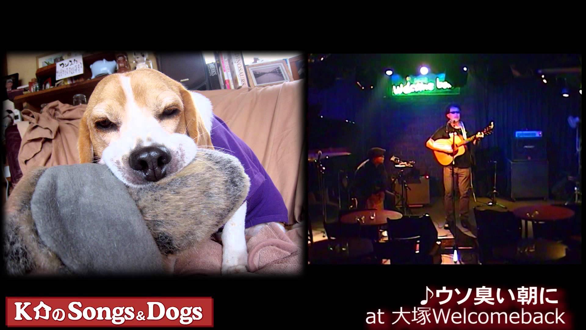 K介のSongs&Dogs週末はミュージシャン~58