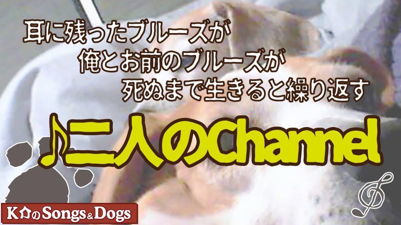♪二人のChannel: K介のSongs&Dogs週末はミュージシャン