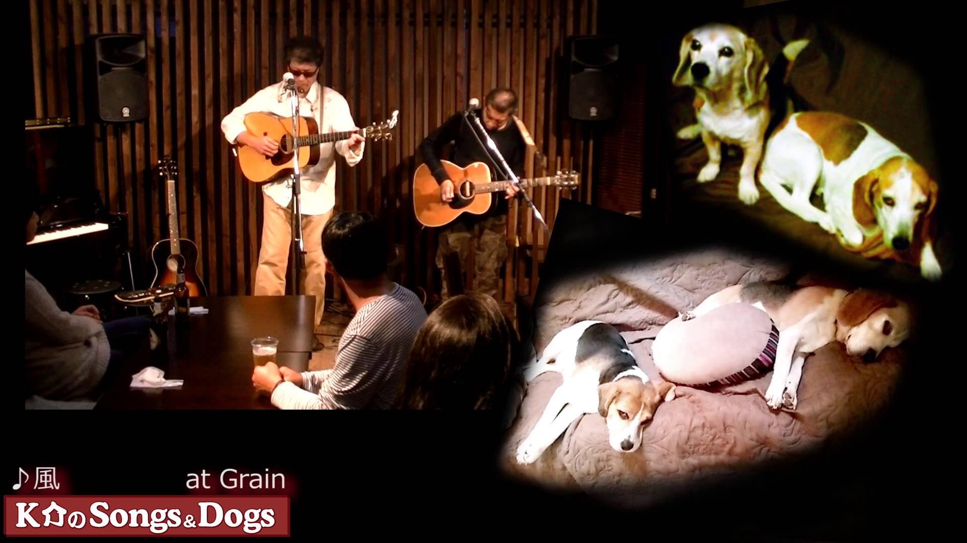 K介のSongs&Dogs週末はミュージシャン94