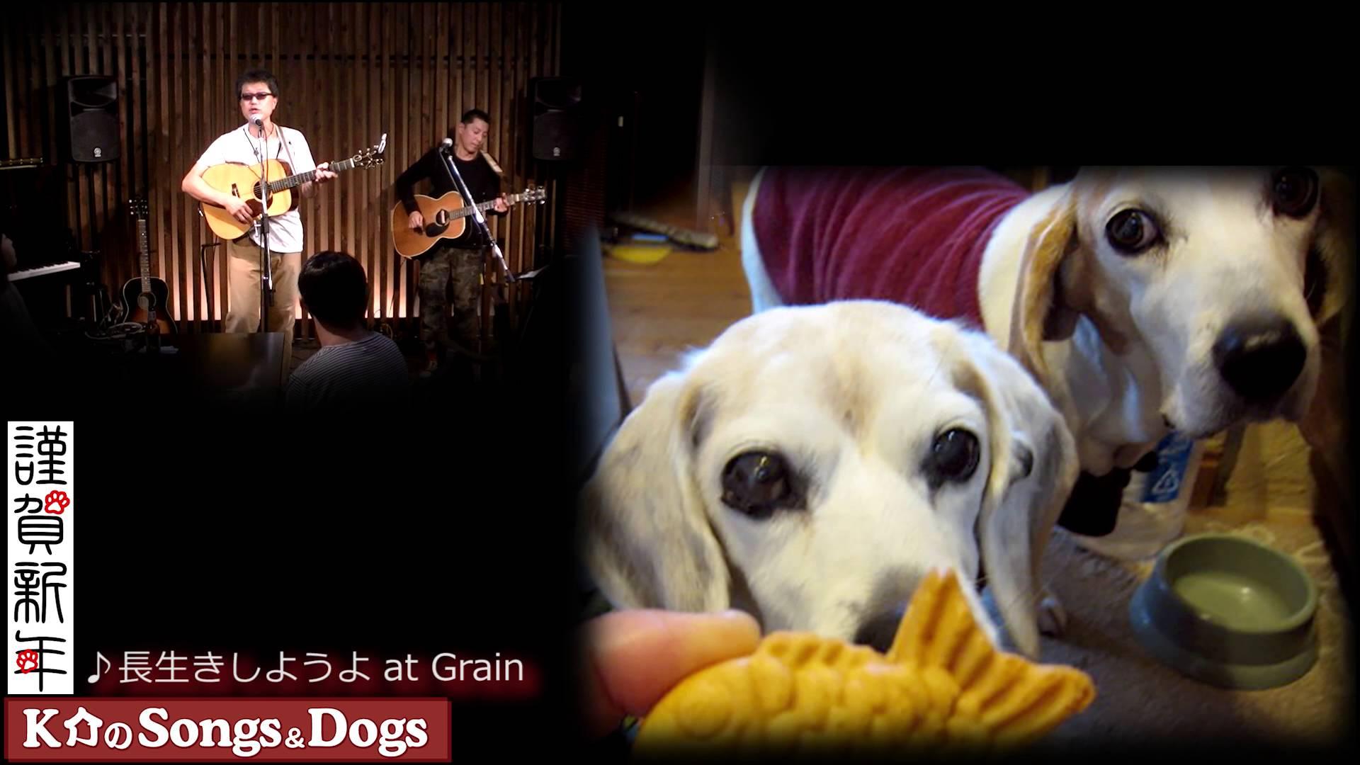 K介のSongs&Dogs週末はミュージシャン96