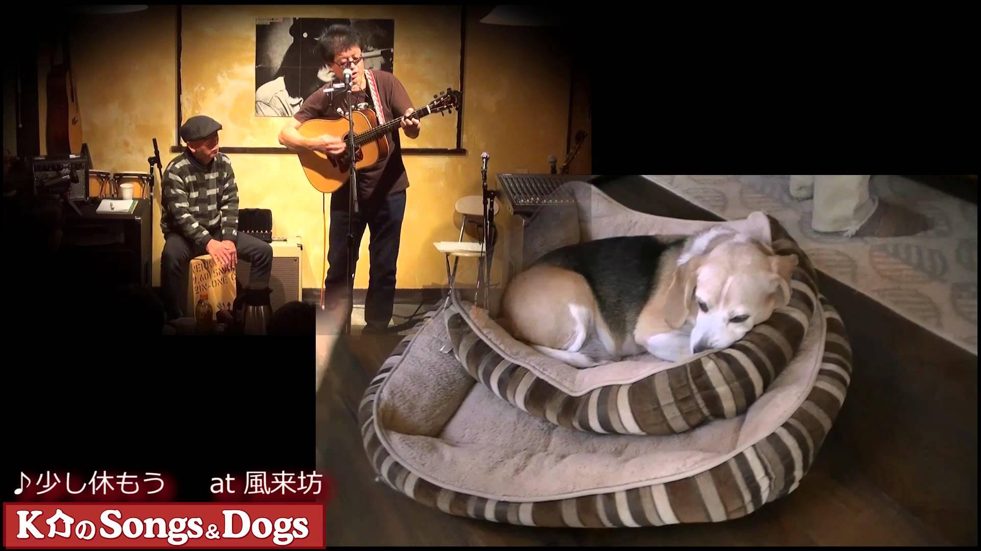K介のSongs&Dogs週末はミュージシャン97