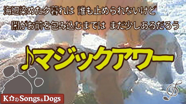 ♪マジックアワー  : K介のSongs&Dogs週末はミュージシャン