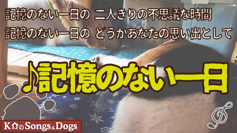 ♪記憶のない一日 : K介のSongs&Dogs週末はミュージシャン