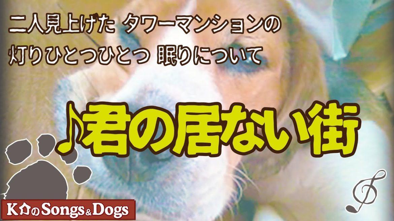 ♪君の居ない街: K介のSongs&Dogs週末はミュージシャン