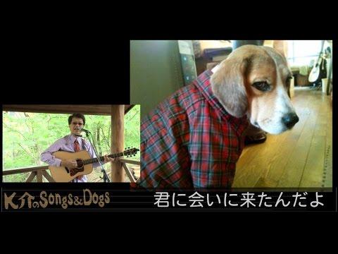 K介のSongs&Dogs週末はミュージシャン~21