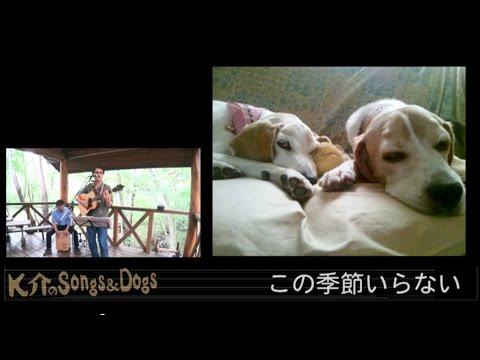 K介のSongs&Dogs週末はミュージシャン~26