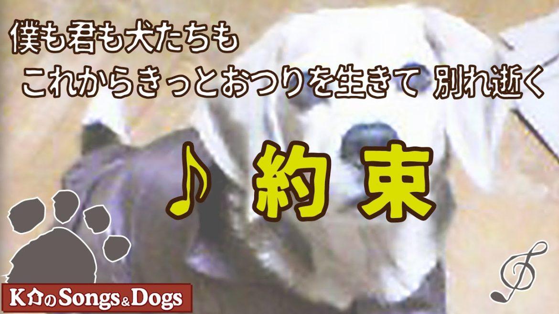 ♪約束 : K介のSongs&Dogs週末はミュージシャン327