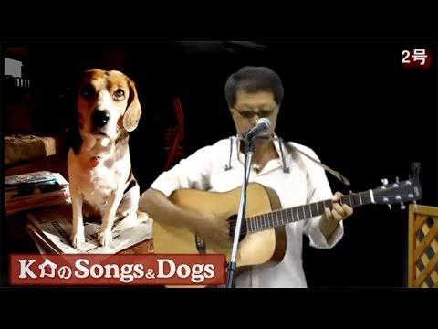K介のSongs&Dogs週末はミュージシャン~34