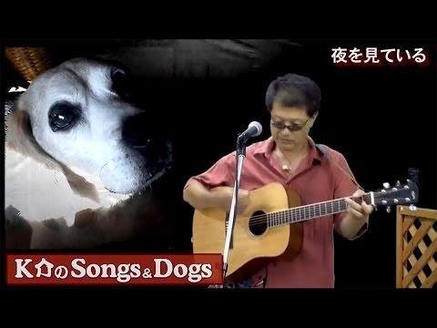 K介のSongs&Dogs週末はミュージシャン~35