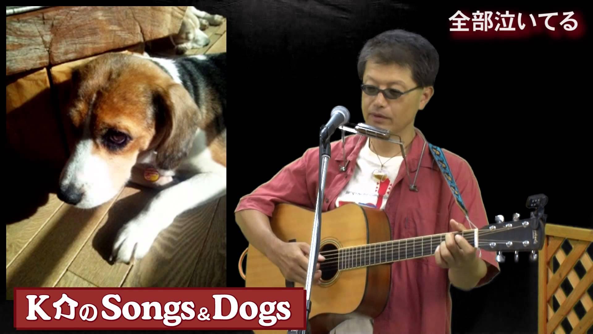 K介のSongs&Dogs週末はミュージシャン~38