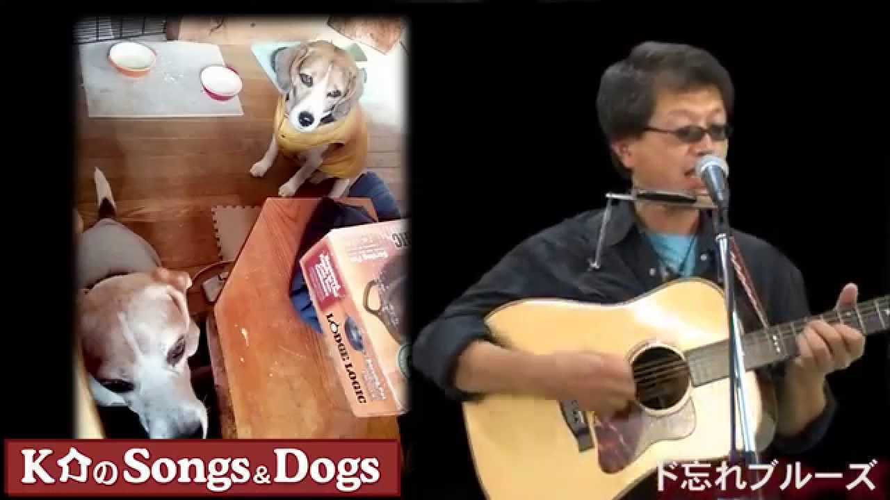K介のSongs&Dogs週末はミュージシャン~44