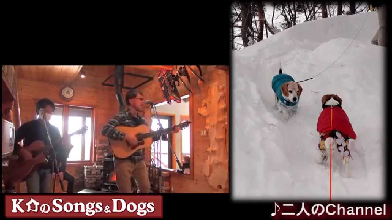 K介のSongs&Dogs週末はミュージシャン~47