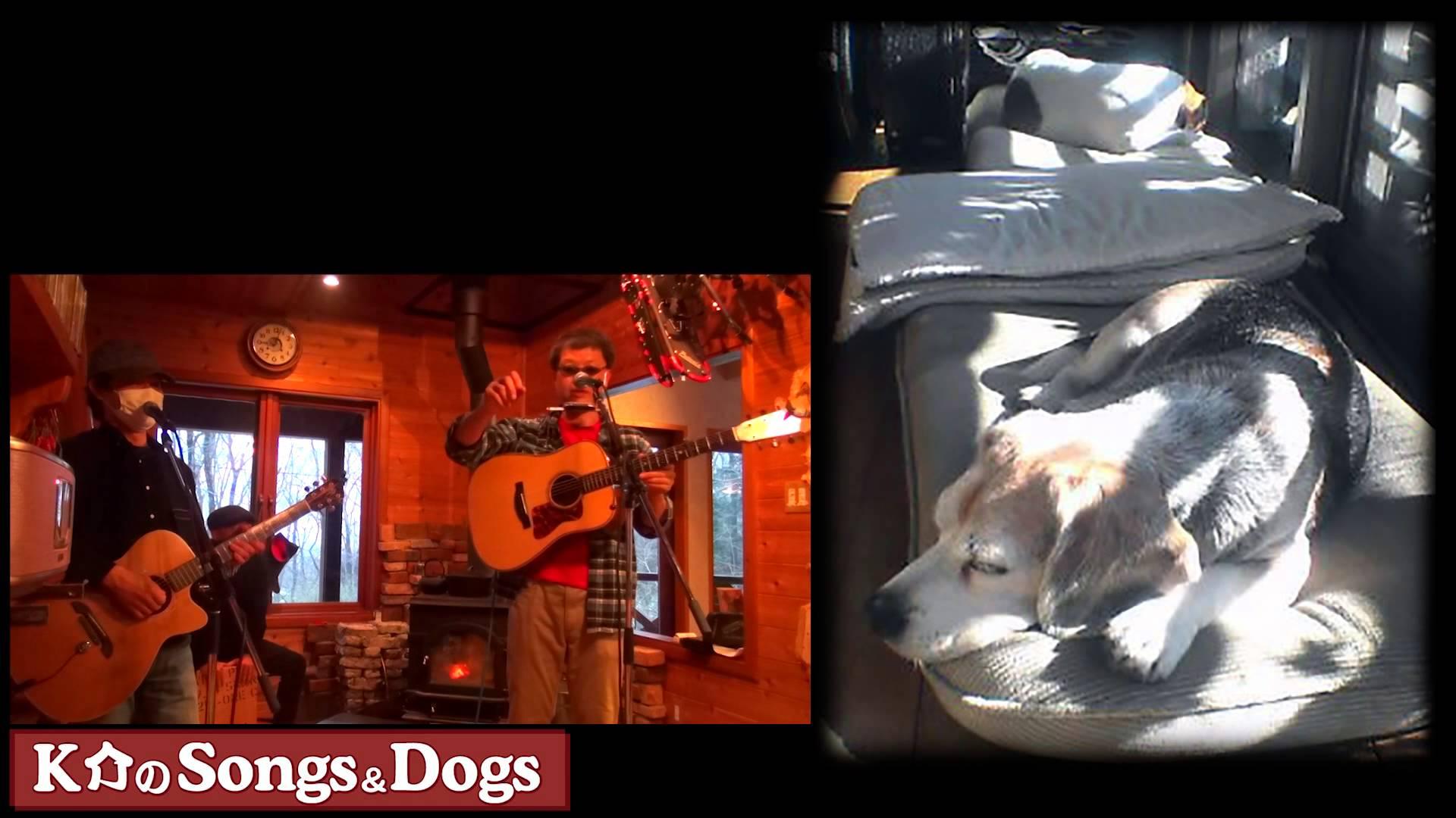 K介のSongs&Dogs週末はミュージシャン~52