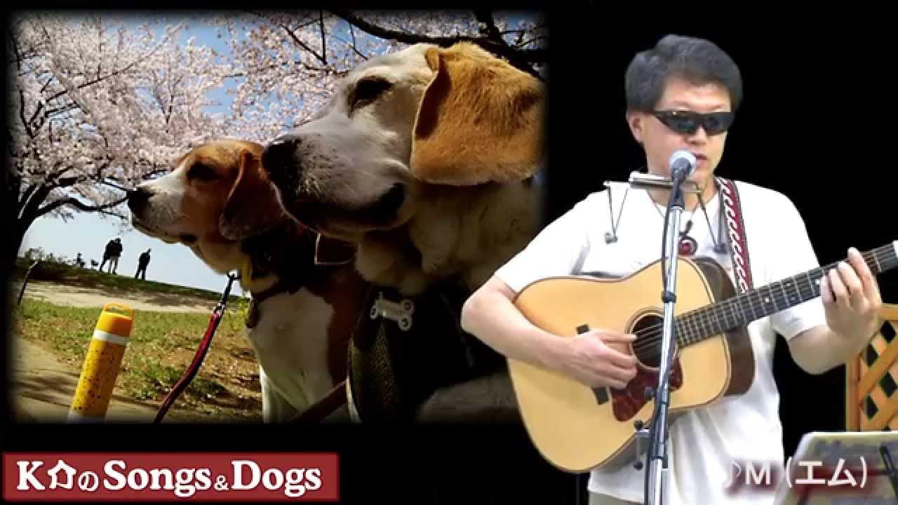 K介のSongs&Dogs週末はミュージシャン~57
