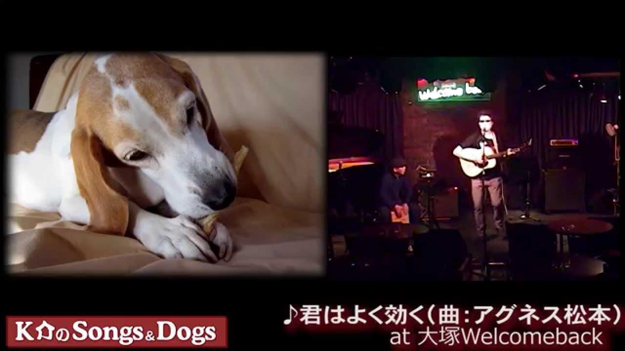 K介のSongs&Dogs週末はミュージシャン~60