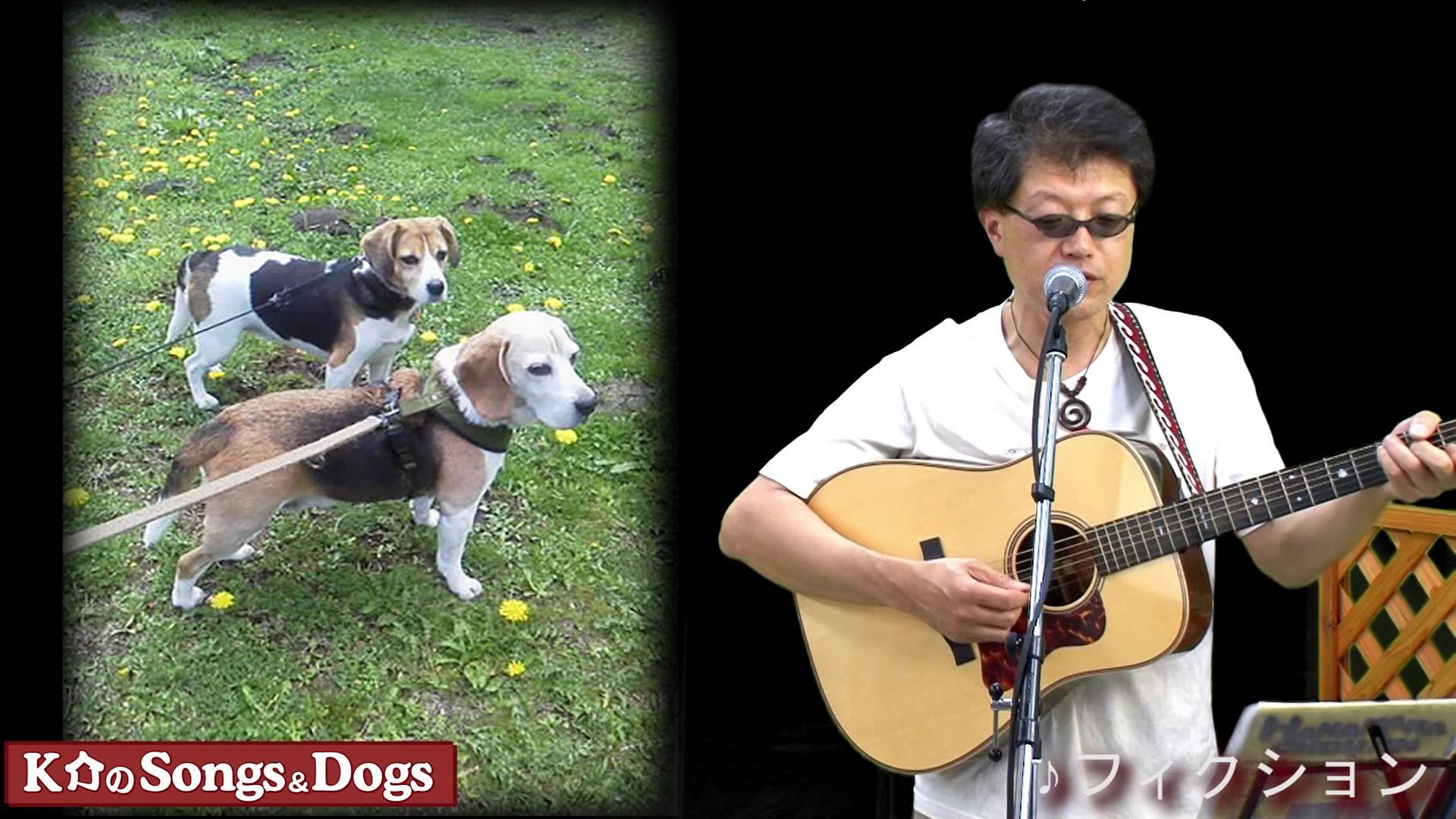 K介のSongs&Dogs週末はミュージシャン~66