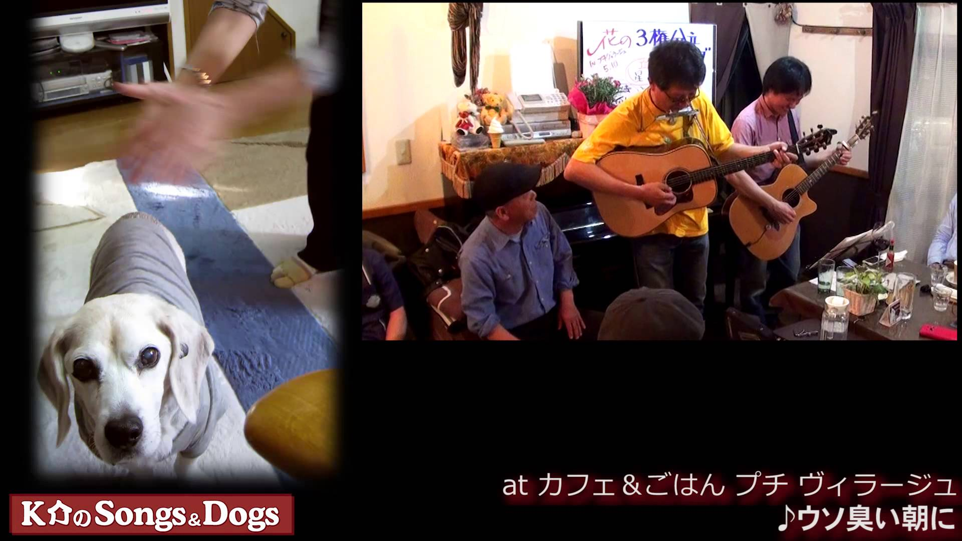 K介のSongs&Dogs週末はミュージシャン77