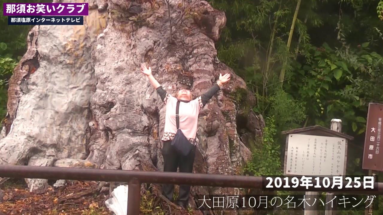 大田原10月の名木ハイキング~那須お笑いクラブ