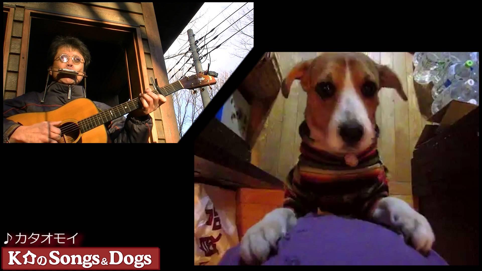 103th: K介のSongs&Dogs週末はミュージシャン