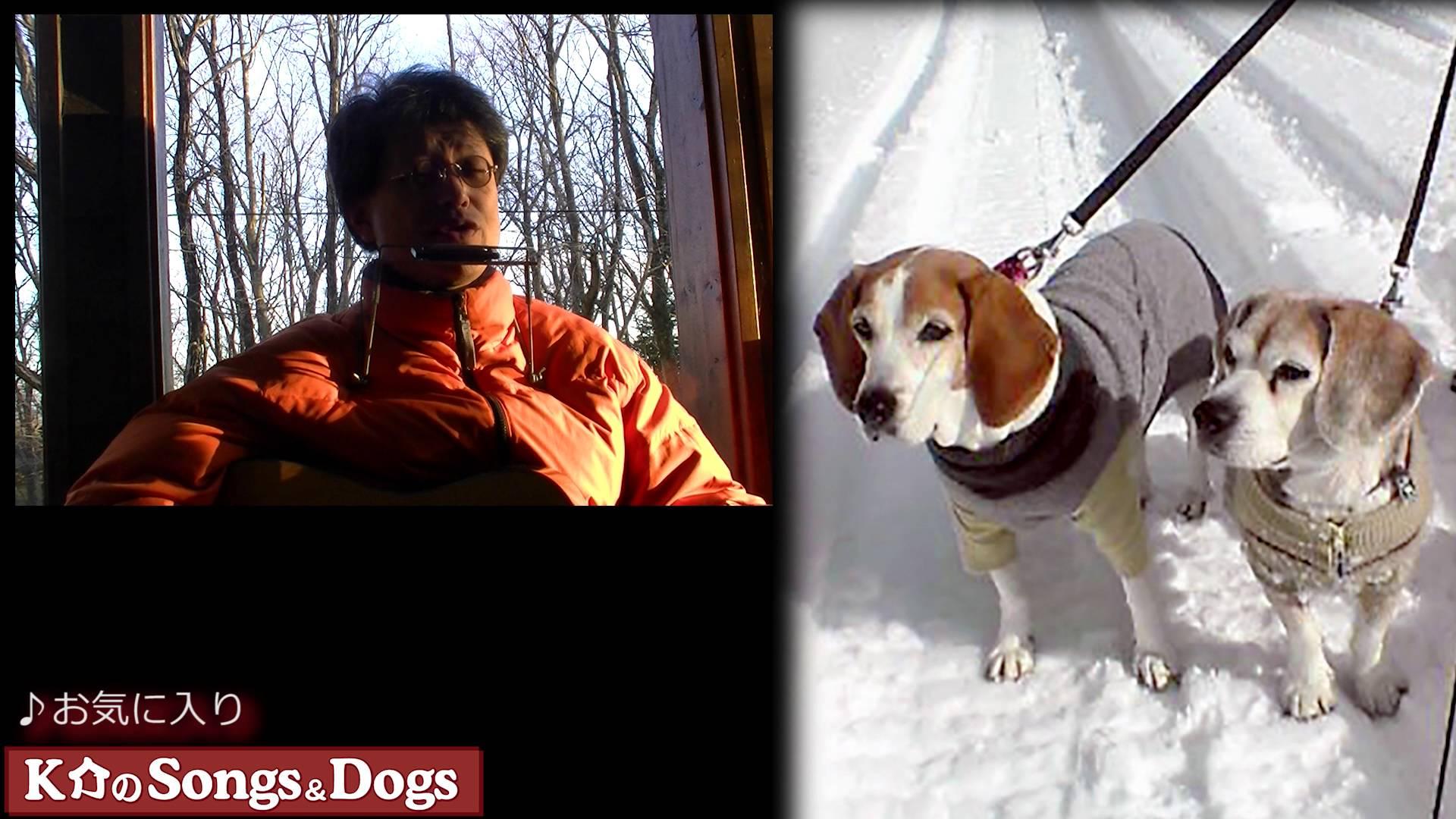 104th: K介のSongs&Dogs週末はミュージシャン