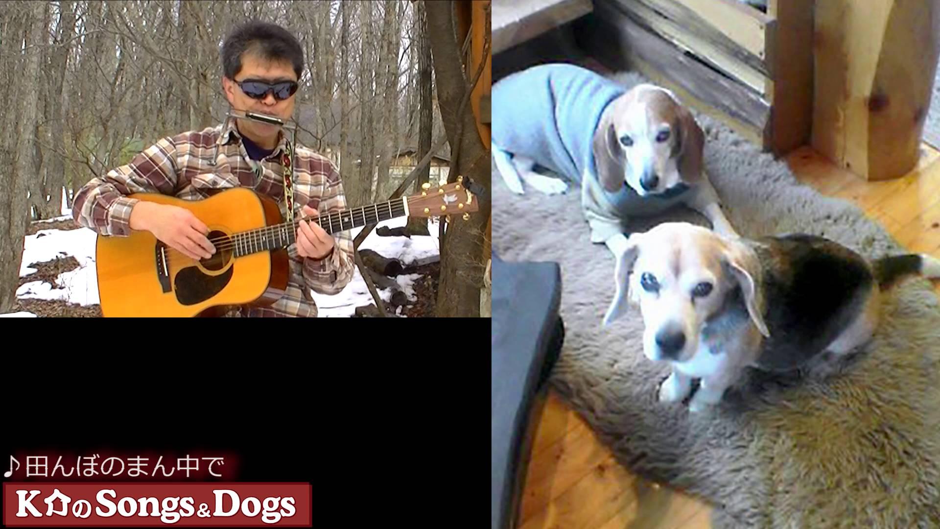 108th: K介のSongs&Dogs週末はミュージシャン