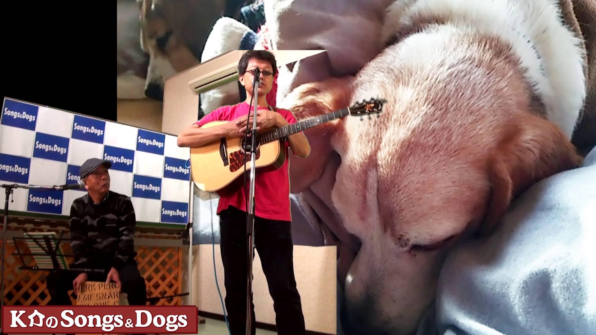109th: K介のSongs&Dogs週末はミュージシャン